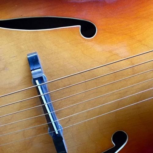 Extinct Audio Acoustic Guitars