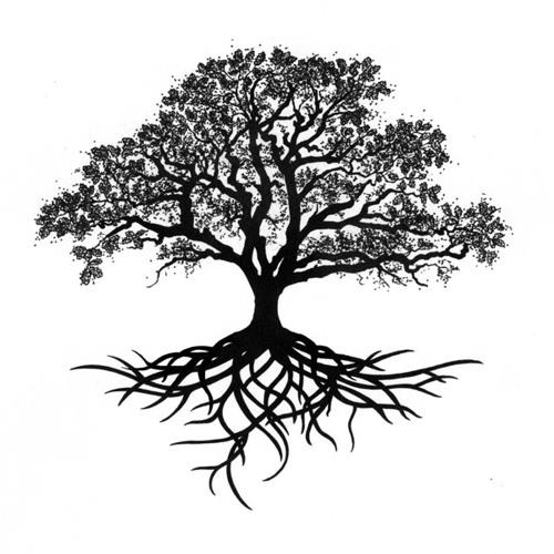 Getting Grounded - Luke 6:39-49
