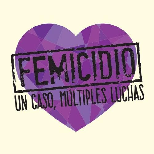 Entrevista sobre el estreno del documental Femicidio. Un caso, múltiples luchas