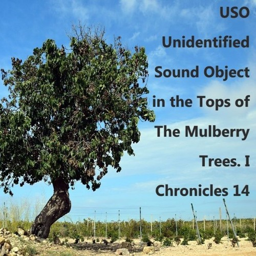 USO Unidentified Sound Object In The Tops Of The Mulberry Trees. I Chronicles 14