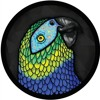 Along Came Polly (Cooper Gibbs Edit) FREE DOWNLOAD