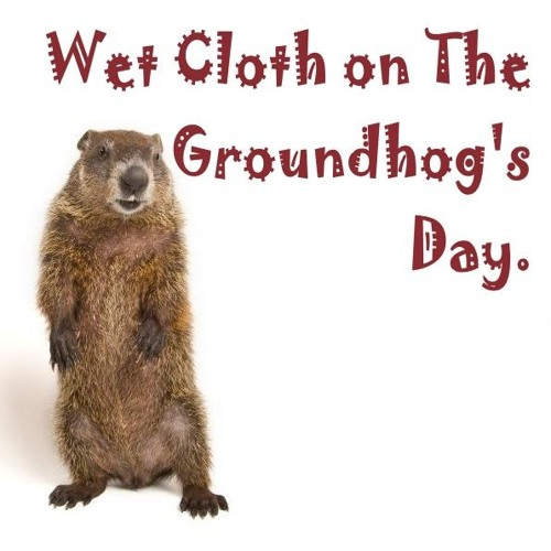 Wet Cloth On The Ground Hog Day