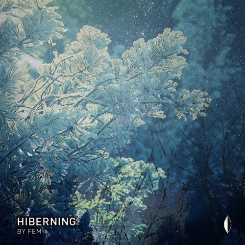 HIBERNING | FEM