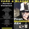 Varg & Bladee - Perfect Violation