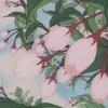 frank ocean - pink + white (slowed + reverb) mp3