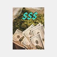cash no bolso Artwork