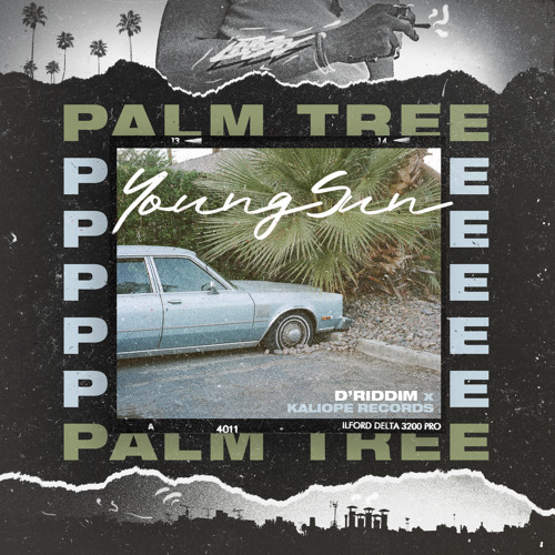 YoungSun & D'Riddim ft. Kaliope - Palm Tree