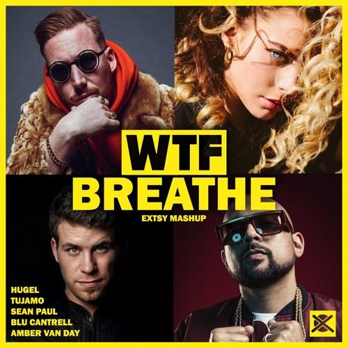 Tujamo x HUGEL x Sean Paul ft. Amber van Day & Blu Cantrell - WTF Breathe (EXTSY Mashup)