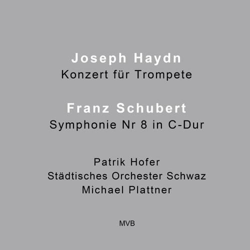 Joseph Haydn - Konzert für Trompete in Es-Dur (1. Satz)