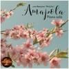 Download Amapola (Pretty Little Poppy), cover theme from First Love (piano solo) Mp3