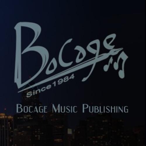 Singer/Songwriter Alt Pop