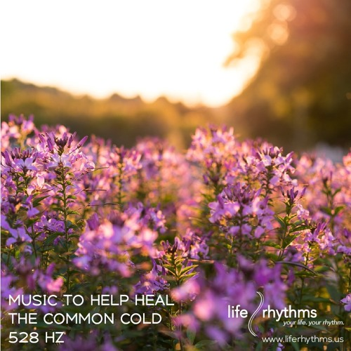 music to help heal the common cold - 528 hz by evlov | Free