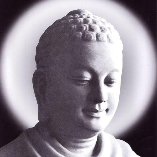14. Kinh Đại Bổn 01(Maha- Padana)