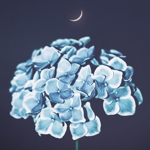 Akira Kosemura - In Moonlight, Op. 2
