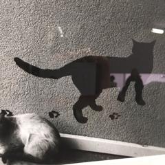 Marchcats