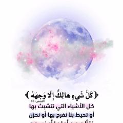 عشائية جميلة لخواتيم سورة القصص بأنفاس منشاوية للشيخ انس العمادي  ٢٧-٦-١٤٤٠هـ