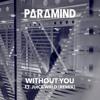 Halsey - Without You (ft. Juice WRLD) [Paramind Remix]