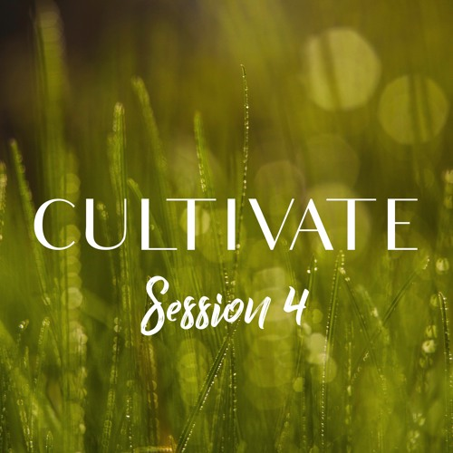 """Cultivate, Session 4, """"Jesus Is Grace and Truth"""""""
