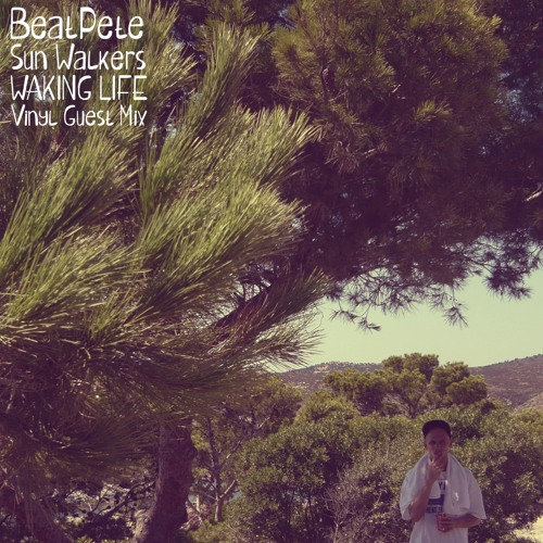 BeatPete - Sun Walkers