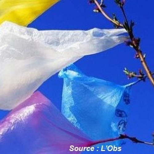 Le Mot De L'info 6 mars - Rapport WWF Sur Le Plastique