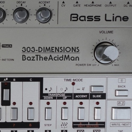 BazTheAcidMan on 303 Dimensions 042