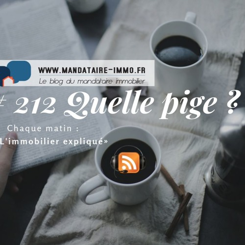PODCAST'IMMO #212 : QUELLE PIGE ?