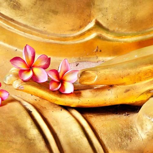 Meditation Stille Langsamkeit Herz