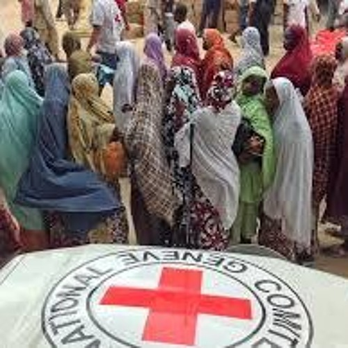 The Deepening Humanitarian Crisis in Nigeria with Trevor Keck