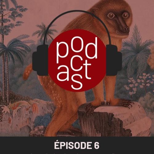 Episode 6 : La valorisation des oeuvres d'art