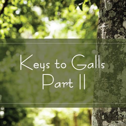 Keys to Galls Part II