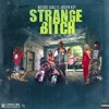 Strange Bitch (Produced by JT Productions) - Lowkey x Weedus x 100BlkBo Ft. Joseph Kay