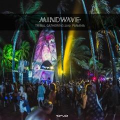 Mindwave @ Tribal Gathering 2019, Panama