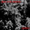 Alone In The Shadows - Frédéric Cherpe - Rosa Osaka - Le Samedi 26 Février 2018