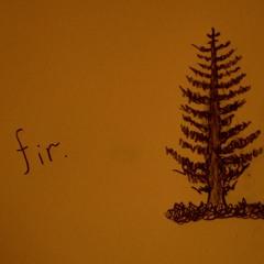 Fir (Part 1)
