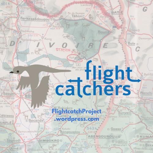 Podcast Flightcatchers 2019