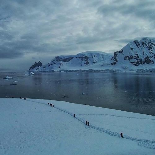 Daisy Hessenberger's Antarctica adventure with Homeward Bound