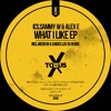A2 - ICS, Sammy W & Alex E - What I Like (Medeew & Chicks Luv Us Remix)