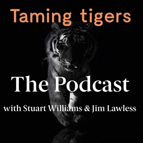 #5 So, How Do You Give A Presentation? Taming Tigers Podcast