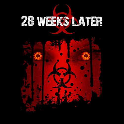 28 Days Later Song