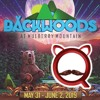 Backwoods at Mulberry Mountain – B4B Competition Entry
