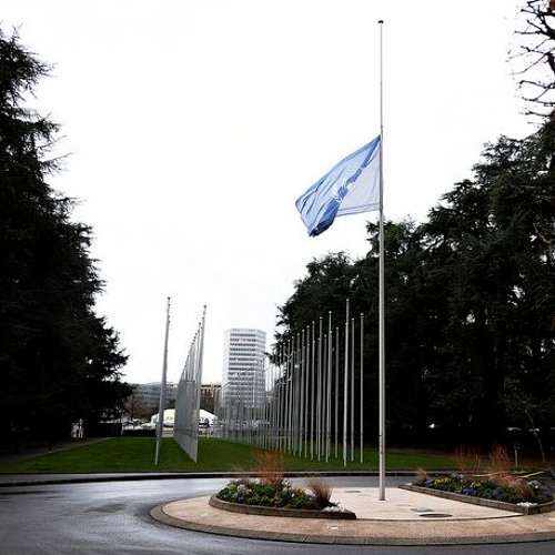 What's on at the UN? - Mourning UN personnel killed in Ethiopian Airlines crash