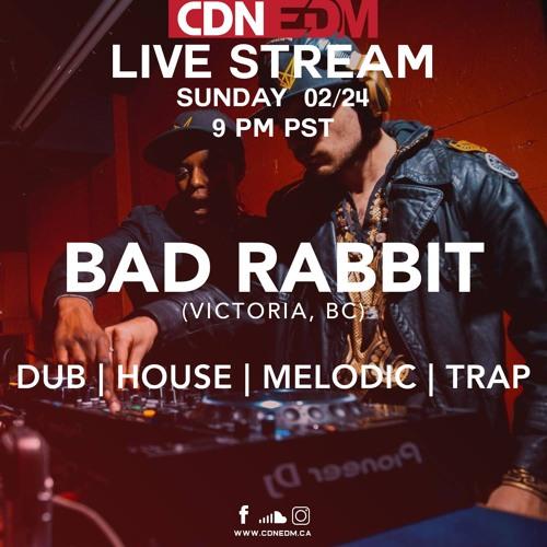 Bad Rabbit With MC Shane Blaq On CDNEDM