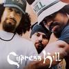 Cypress Hill - I Wanna Get High (336 Remix)