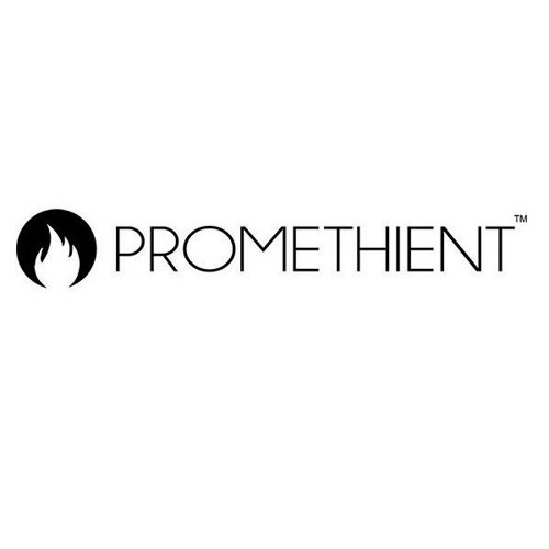 Promethient, Bill Meyer CEO And Rob Summers GT Manufac. Council 3 - 11 - 19.MP3