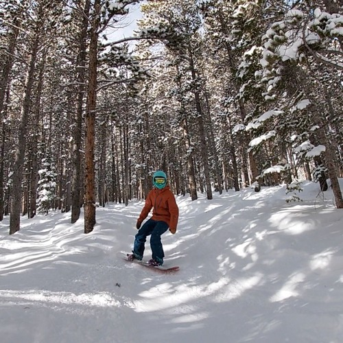 First Chair: How to Snowboard in the Trees