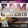 EDM Genesis Sample Pack | 6 FL Studio Templates + 580 Sounds & Presets