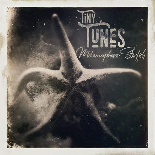 Tiny Tunes, Metamorphoses: Etoile de Mer