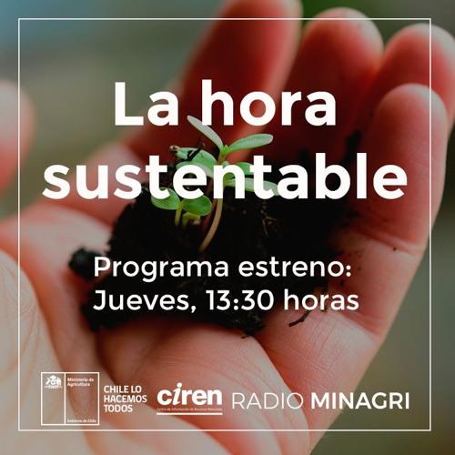 La Hora sustentable (CIREN)