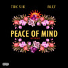 Tok Sik, Alef - Peace Of Mind (VIP Remix)