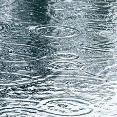 Noon K said its rainning